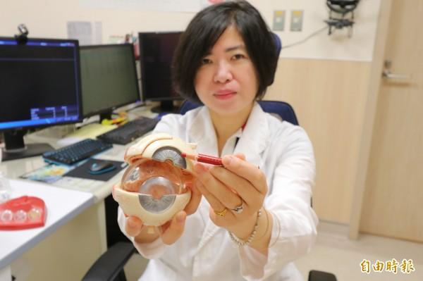 亞大醫院眼科主任梁中玲指出民眾眼睛罹患虹彩炎的位置。(記者陳建志攝)