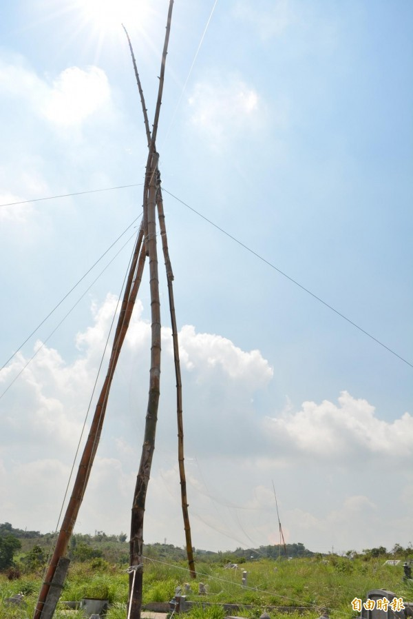 彰化市八卦山第二公墓稜線遭違法架設長度達300公尺的超大型鳥網。(記者湯世名攝)