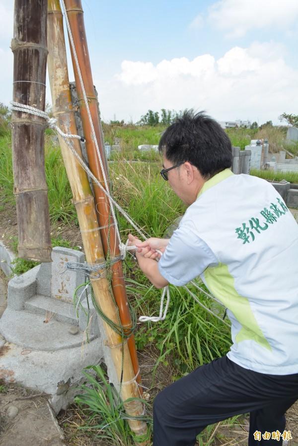 彰化縣政府農業處副處長郭至善將綑綁在竹子上的繩索解開,拆除鳥網。(記者湯世名攝)