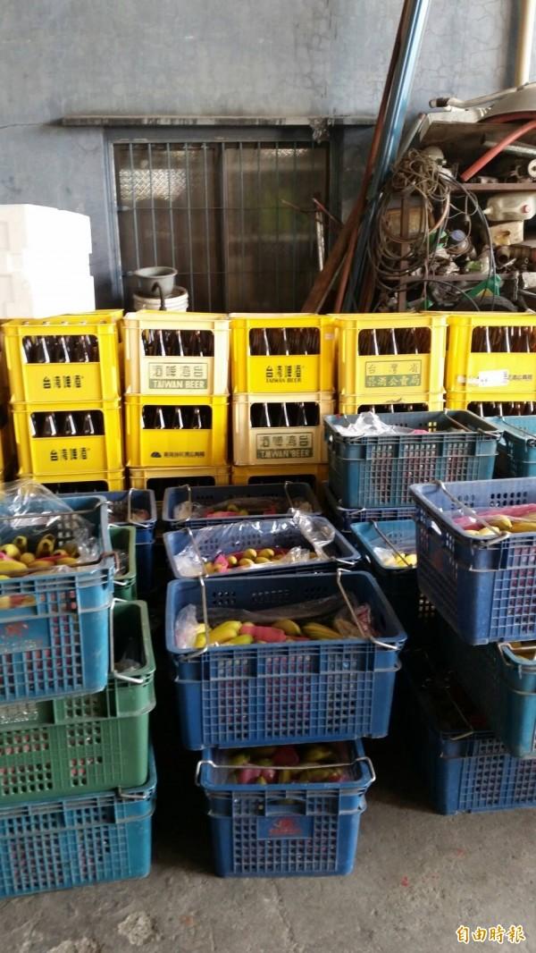 信徒捐贈大批物資迎接白沙屯媽祖。(記者廖淑玲攝)