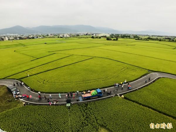 熱氣球離地最高可達20公尺,宜蘭伯朗大道金黃稻田美景盡收眼底。(冬山鄉公所提供)