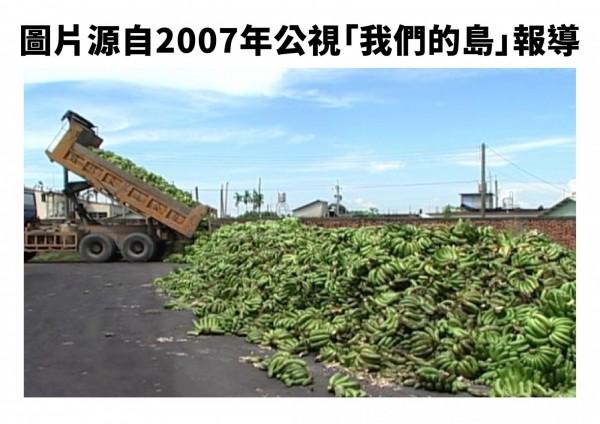 網傳香蕉產銷失調,指高雄旗山某地區農民直接把青蕉倒在地上,但此圖經查證為2007年香蕉產銷失調時公視所拍攝,非今年情況。(圖由農委會提供)