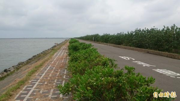七股雷達站將搬遷到七股潟湖鹽埕段海堤二號水門的海堤。(記者楊金城攝)
