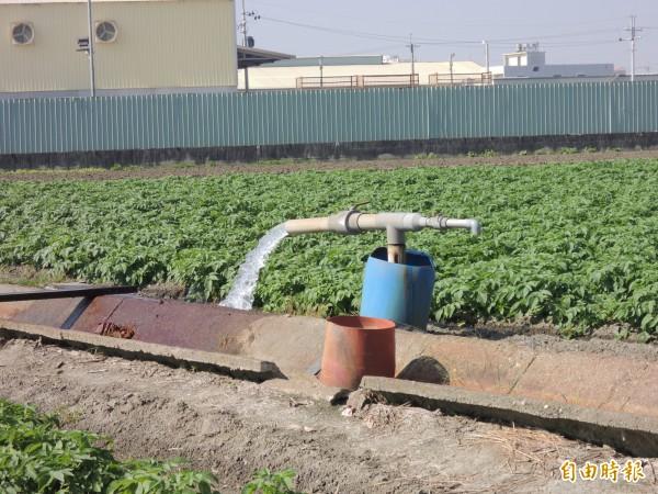 雲林縣灌溉區農地自己挖井找水,卻需繳規費,政策明顯不公平。(記者詹士弘攝)