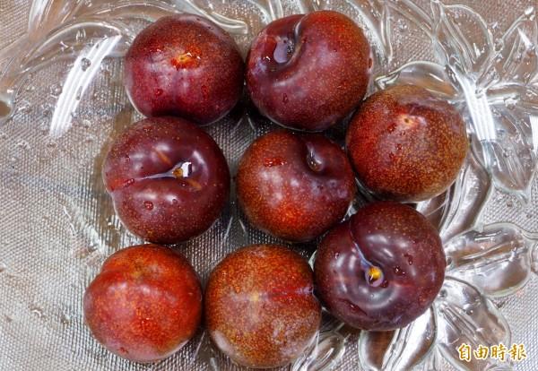 李子是目前當季的水果,因酸味強很多人敬而遠之。(記者陳鳳麗攝)