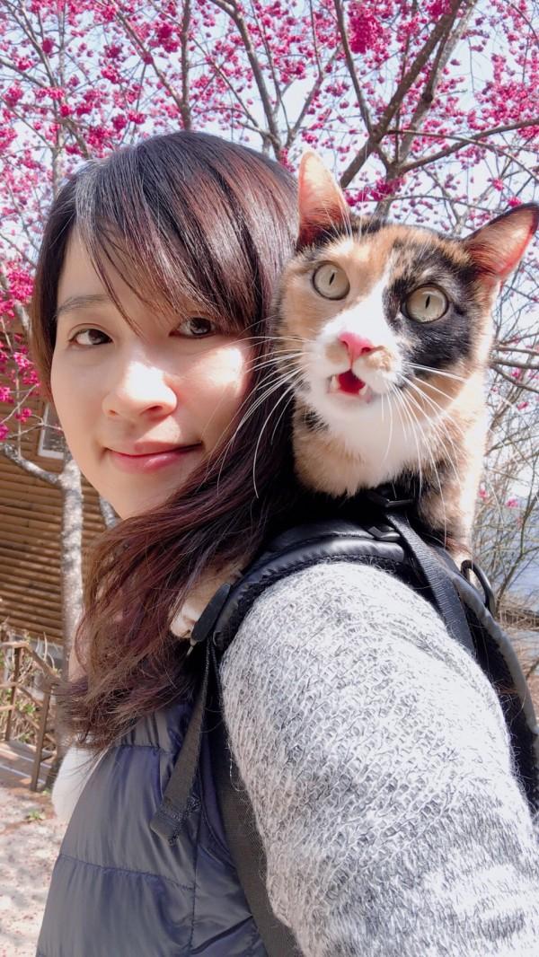 本身愛貓的劉員也認養了一隻流浪貓。(記者許國楨翻攝)
