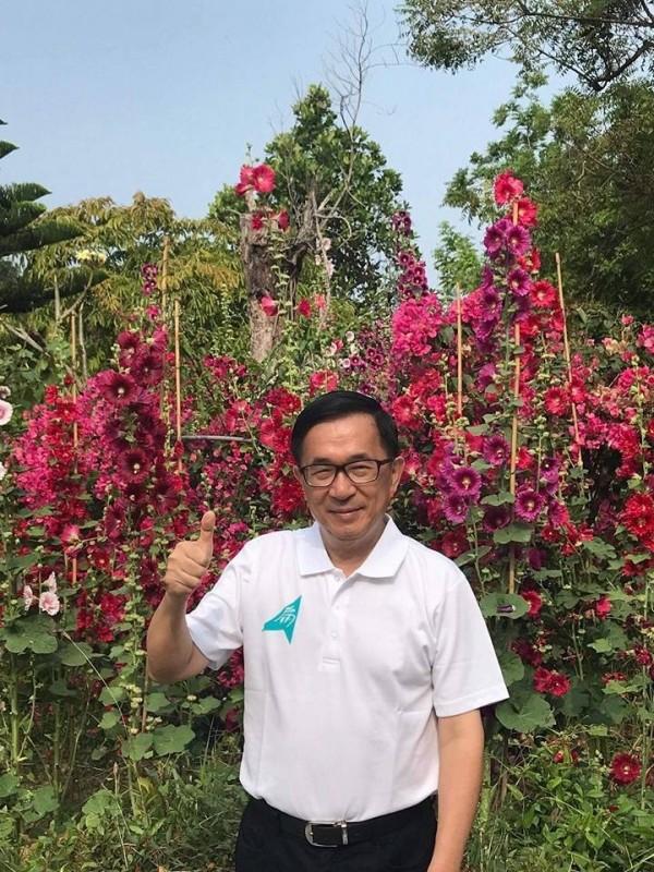 前總統陳水扁看壞民進黨選情,認為「雙北雙贏」可能變成「雙北雙輸」!(取自新勇哥物語)