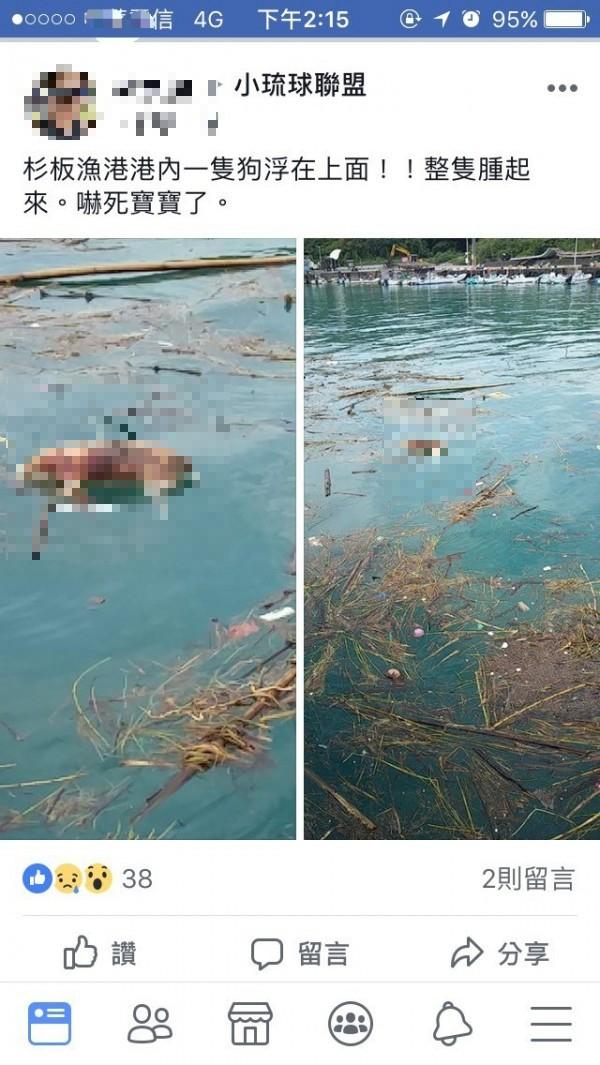 網友發現疑似死狗被放水流到小琉球。(截自臉書社團小琉球聯盟)
