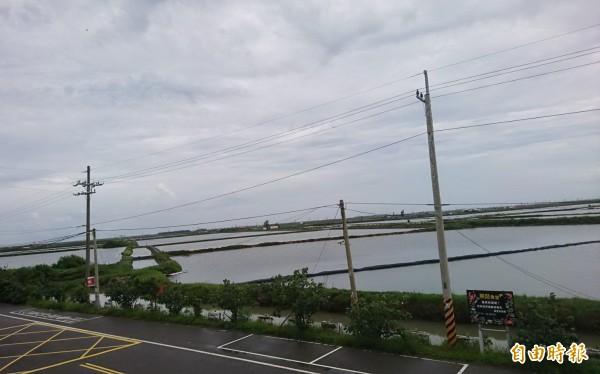 台南七股海埔新生塭段魚塭,綠能業者積極搶進布局。(記者楊金城攝)