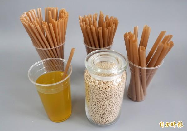 甘蔗纖維吸管有不同尺寸,還因應台灣習慣採斜口設計。(記者陳鳳麗攝)