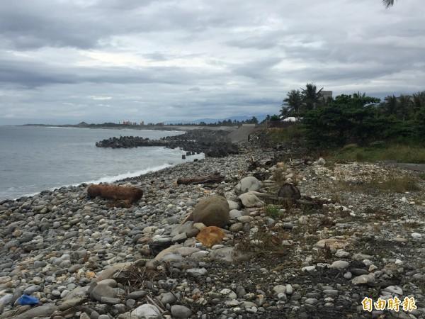 縣府將新增部分富岡海堤,保護在地安全。(記者張存薇攝)
