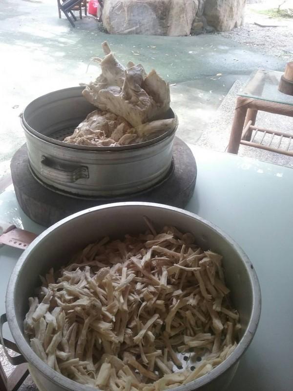 吳進貴將吃不完的「金福菇」切塊,準備曬乾後再慢慢吃。(吳進貴提供)