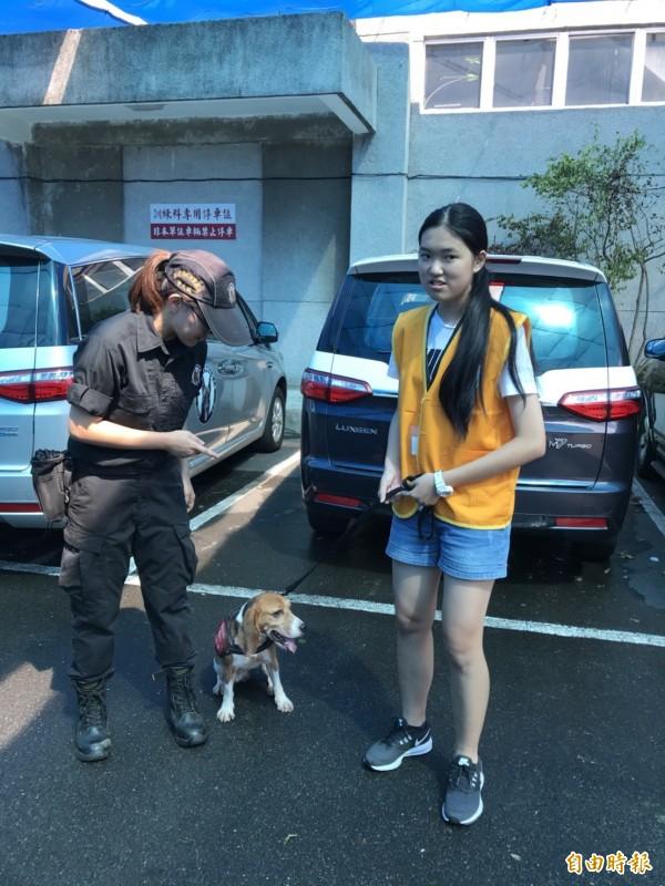 新北市警察局鑑識中心舉辦CSI偵探營,吸引小小福爾摩斯們體驗鑑識關卡,培養敏銳觀察力,並對鑑識概念扎根;圖為學員們體驗操作警犬。 (記者吳仁捷攝)