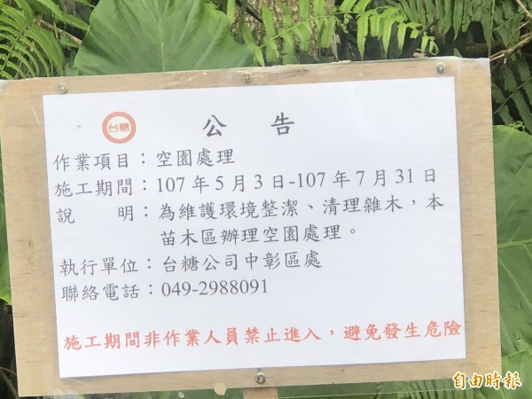台糖公司中彰區處張貼公告,說明砍樹原委,但許多網友無法接受。(記者佟振國攝)