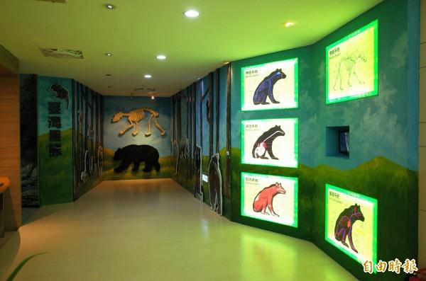 玉山國家公園南安遊客中心一進門,右邊的「臺灣黑熊」展示區,展出內容粗糙、錯誤不少,讓黑熊媽媽黃美秀看了都傻眼。(記者花孟璟攝)