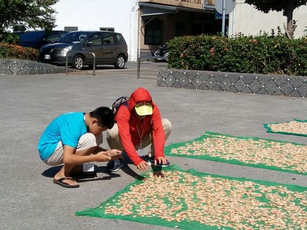 宜蘭縣南安國小今年獲得旅美台胞的捐款,校方開辦暑期攝影課,讓學童用相機為家鄉寫紀錄。(記者張議晨翻攝)