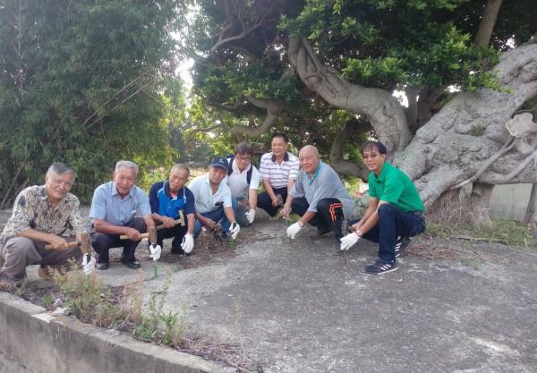 社區居民、地方耆老、NGO志工等自備工具,刨除覆蓋在樹根上的水泥,要讓老榕樹重新呼吸。(記者鄭名翔翻攝)