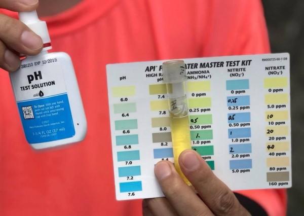 民眾取酸鹼指示劑檢驗,發現水質嚴重偏酸性。(記者許倬勛翻攝)