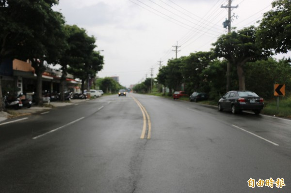 竹南鎮公所擬於和興路段增設排水溝、整建人行道並移除現有路樹。(記者鄭名翔攝)