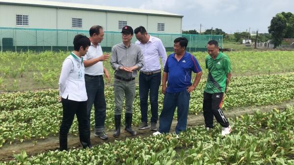 陳其邁(左三)前往梓官區的蔬菜專區,關心雨災導致葉菜受損情形。(記者葛祐豪翻攝)