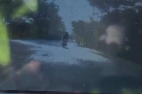 4名少年騎車行經139線大彰路,騎在最前方的吳姓少年突然摔車,衝撞路樹命危。(記者湯世名翻攝)