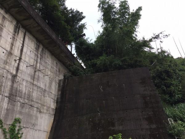 139線大彰路今天再傳死亡車禍,男子連同機車墜落6公尺深山谷身亡。(記者湯世名翻攝)