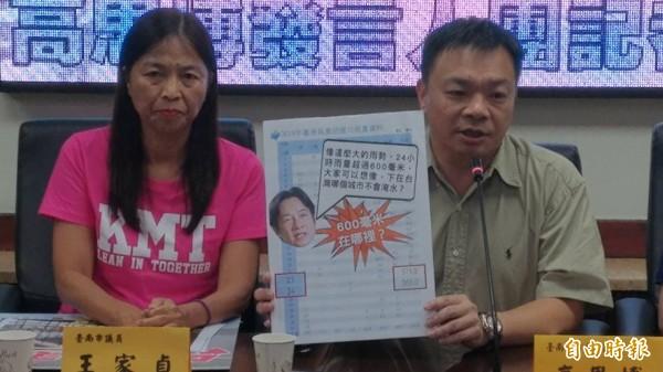 王家貞(左)表示,民進黨長期執政,老大心態愈來愈嚴重。(資料照)
