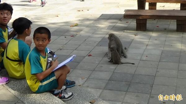 學童親近獼猴。(記者黃旭磊攝)