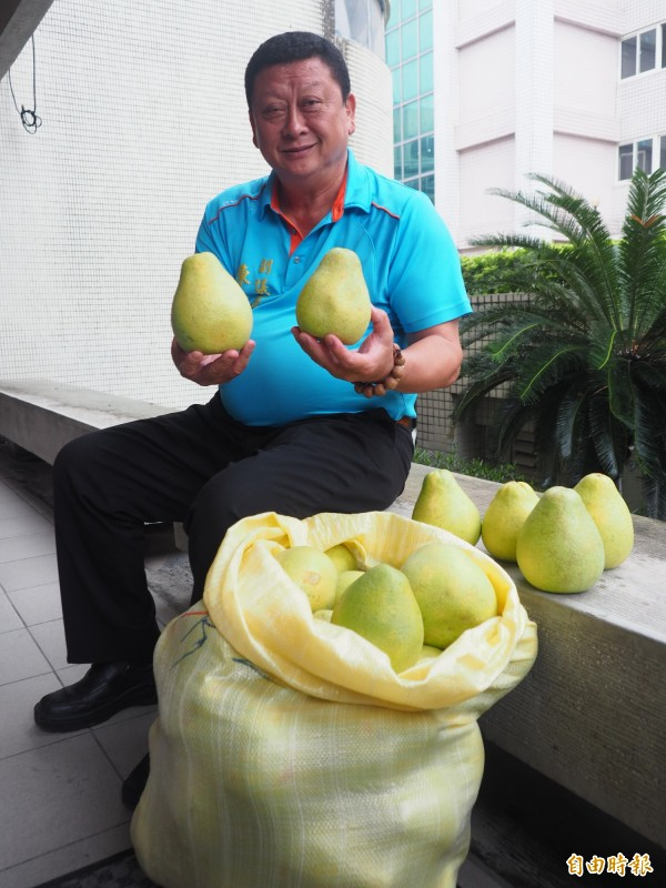 台東縣議會副議長陳宏宗聽聞鄰縣文旦價格低,馬上購買分送親友,想不到送來的是10大袋。(記者王秀亭攝)