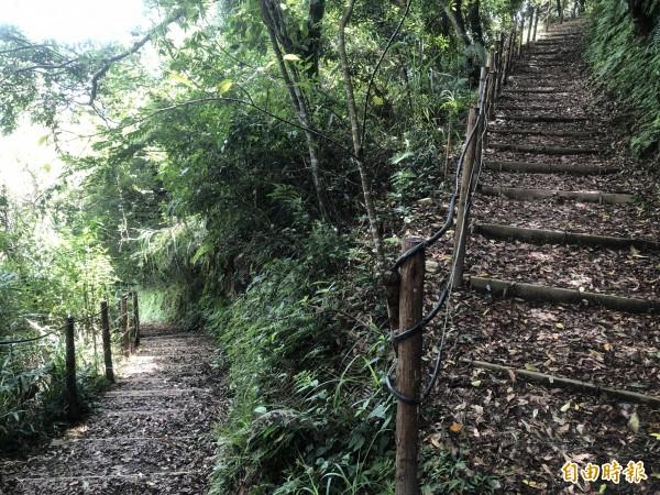 步道旁有原木護欄,每個階梯也有水保擋板保護,避免土石流失。(記者佟振國攝)