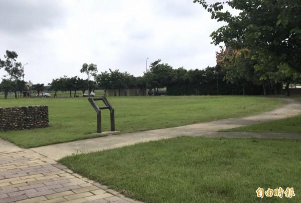 中壢區領航南路一段的公15公園草地。(記者李容萍攝)