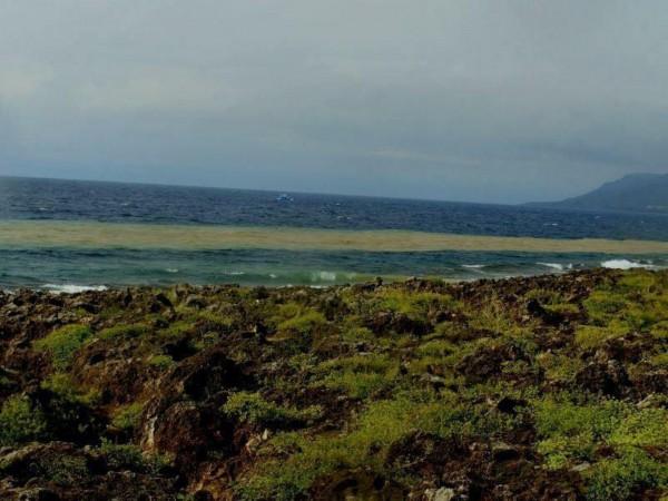 後壁湖海域受到泥流侵襲的狀況。(記者蔡宗憲翻攝)