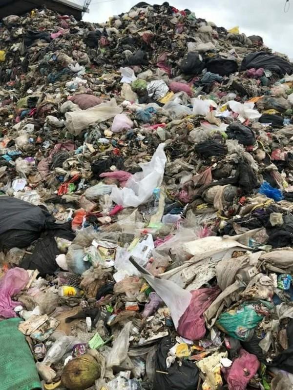 澎湖垃圾又堆積如山,楊曜質疑若爆發傳染病誰能負責?(楊曜提供)