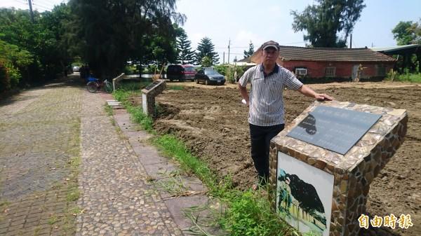 被砍樹後,唸謠步道的綠蔭缺了一塊,讓創作者退休校長黃文博也氣了。(記者楊金城攝)