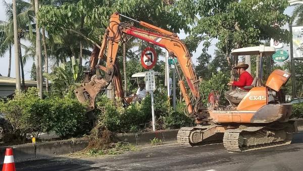 縣道168線路樹、矮灌正在挖起。(圖由民眾提供)