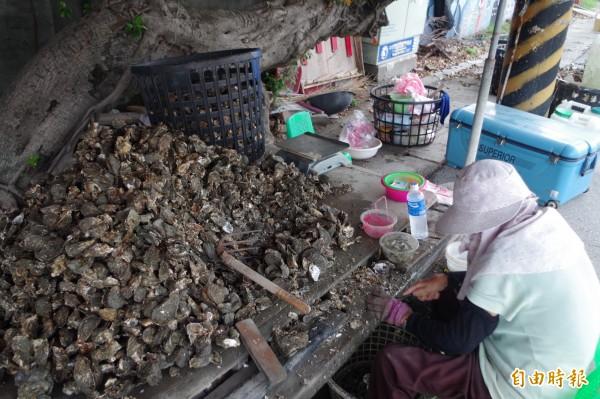 牡蠣價格每台斤150元上下。(記者林國賢攝)