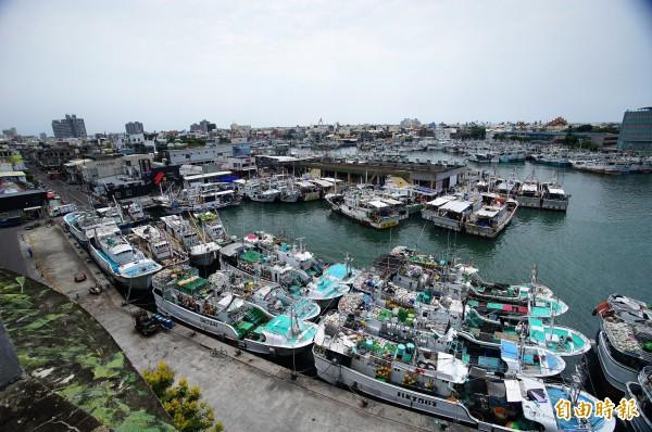 東港漁港湧現歸港避風雨的漁船。(記者陳彥廷攝)