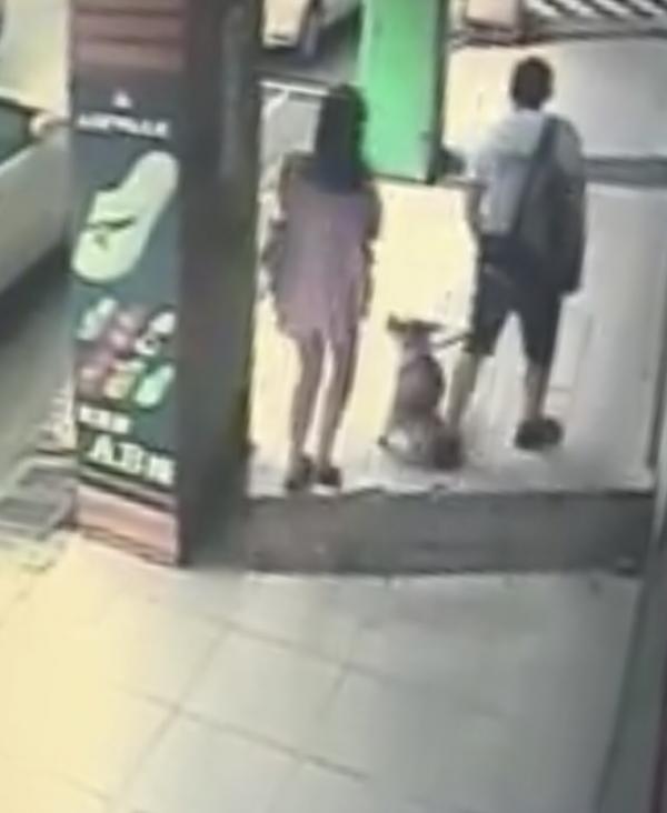 圖中情侶遛狗皮夾從口袋滑出,絲毫未察覺。(翻攝臉書「爆料公社」)