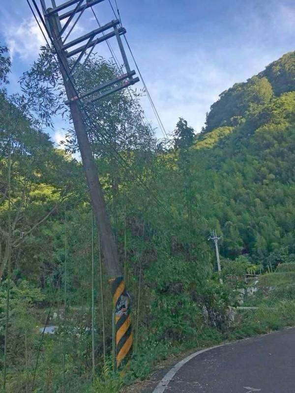 新竹縣尖石鄉鄉道竹60線旁3週前出現這根「歪腰電桿」,差點成為觀光景點。(圖由賴明惠提供)