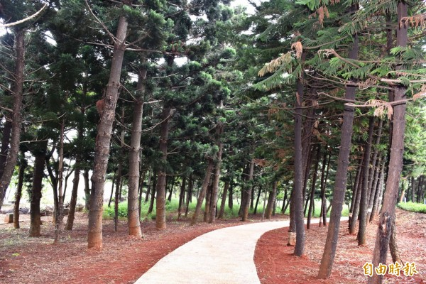 中壢人森呼吸的好所在!過嶺森林公園四季可欣賞不同景色。(記者李容萍攝)