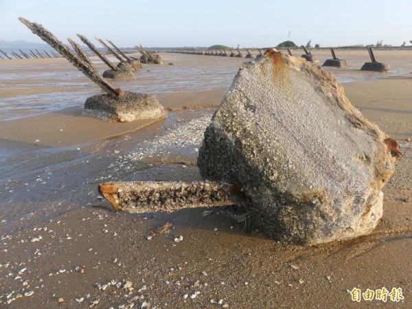 金門沙崗海灘「安東一營區」外的軍事地景軌條砦,疑因蚵道廠商施工不慎而傾倒。(記者吳正庭攝)