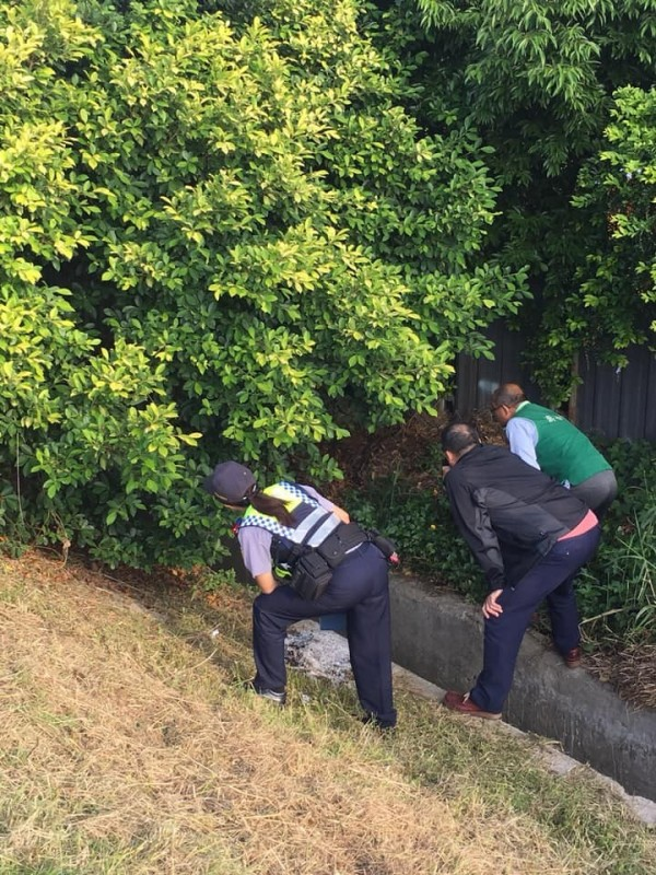 市議員游吾和樹林發現白骨,立刻報警到場處理。(摘自游吾和臉書)