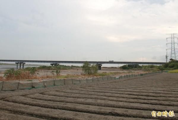 劉姓農民橋下承租農田距離自強大橋約250公尺遠。(記者陳冠備攝)
