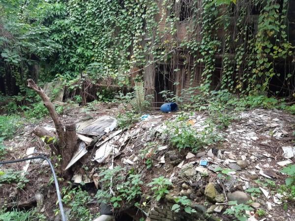 「龜崙嶺鐵道遺構」現場一片荒蕪。(朱梅雪總部提供)