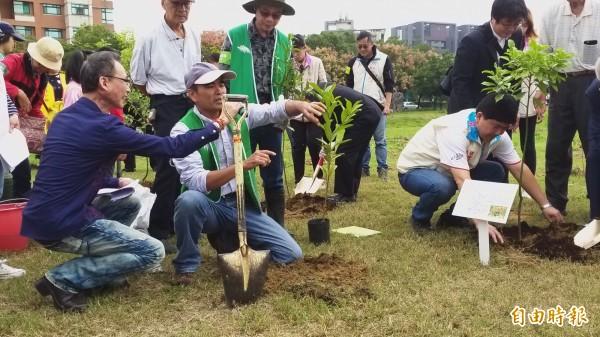 台灣原生植物保育協會理事長呂文賓示範如何正確種樹。(記者廖雪茹攝)