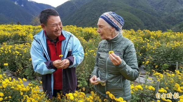 國際保育大使珍古德博士(右)參觀武陵農場種植的杭菊。(武陵農場提供)