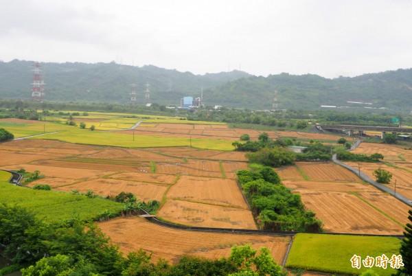 草屯鎮北勢湳大面積農田,未來將成為鳥嘴潭人工湖。(記者陳鳳麗攝)