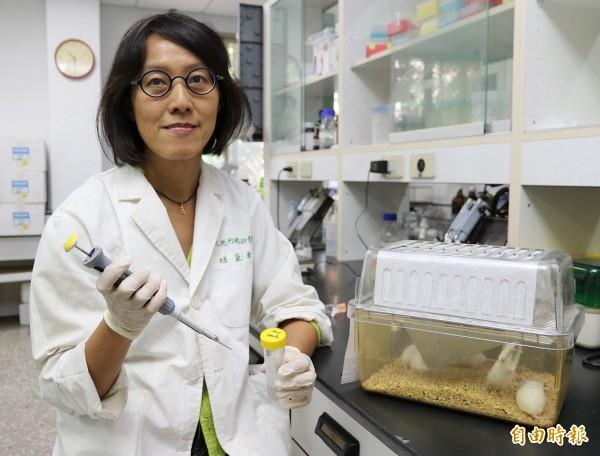 興大微衛所教授趙黛瑜團隊開發新一代登革熱疫苗。(記者蔡淑媛攝)