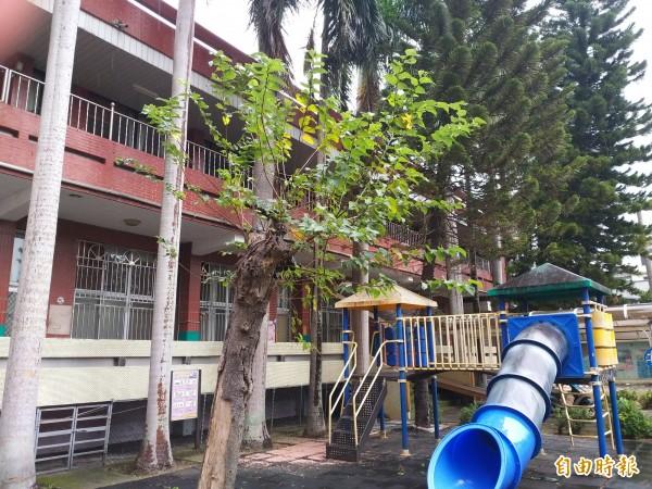 竹北市長何淦銘表示,公所擬利用舊十興幼兒園新建多功能大樓,提供幼兒園、親子館、集會所等使用,將研擬初步規劃後,努力向中央爭取經費。(記者廖雪茹攝)