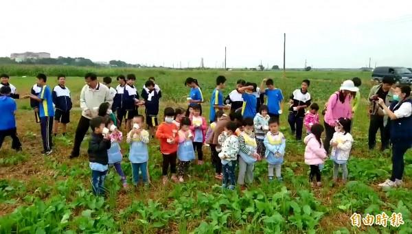 菁寮國中、國小學子在田地撒下種子,12月30日邀大家來拔蘿蔔。(記者王涵平攝)
